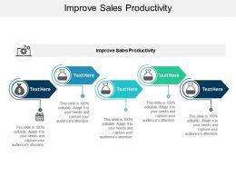 Improve Sales Productivity Ppt Powerpoint Presentation Slides Good Cpb