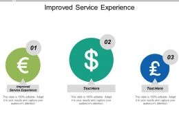 Improved Service Experience Ppt Powerpoint Presentation Portfolio Background Image Cpb