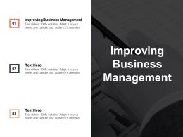 Improving Business Management Ppt Powerpoint Presentation Infographic Template Design Ideas Cpb