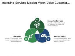 Improving Services Mission Vision Voice Customer Marketing Strategy