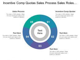 Incentive Comp Quotas Sales Process Sales Roles Structure