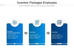 Incentive Packages Employees Ppt Powerpoint Presentation Pictures Cpb