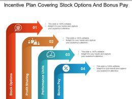 Incentive Plan Covering Stock Options And Bonus Pay