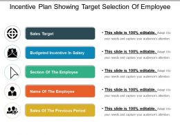 Incentive Plan Showing Target Selection Of Employee