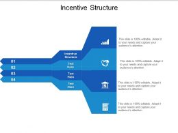 Incentive Structure Ppt Powerpoint Presentation Outline Elements Cpb