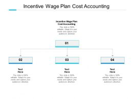 Incentive Wage Plan Cost Accounting Ppt Powerpoint Presentation Template Cpb