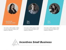Incentives Small Business Ppt Powerpoint Presentation Infographics Example Cpb