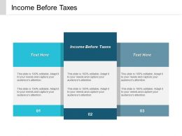 Income Before Taxes Ppt Powerpoint Presentation Styles Diagrams Cpb