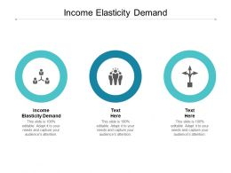 Income Elasticity Demand Ppt Powerpoint Presentation Gallery Format Ideas Cpb