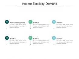 Income Elasticity Demand Ppt Powerpoint Presentation Styles Graphics Template Cpb