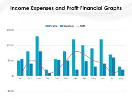 Income Expenses And Profit Financial Graphs