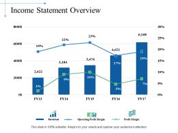 Income Statement Overview Ppt Slide Themes