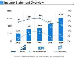 Income Statement Overview Presentation Portfolio