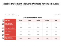 Income Statement Showing Multiple Revenue Sources