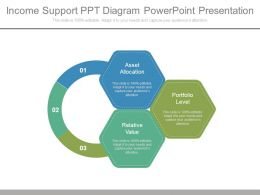 Income Support Ppt Diagram Powerpoint Presentation
