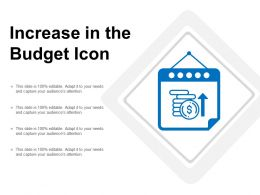 Increase In The Budget Icon