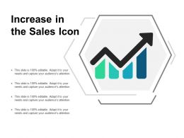 Increase In The Sales Icon