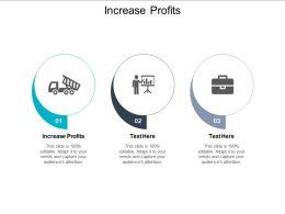 Increase Profits Ppt Powerpoint Presentation Inspiration Portfolio Cpb