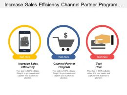 Increase Sales Efficiency Channel Partner Program Optimization Advertising Spending Cpb