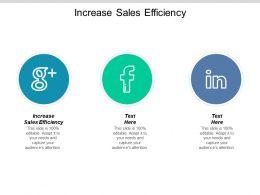 Increase Sales Efficiency Ppt Powerpoint Presentation Ideas Slide Portrait Cpb