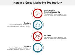 Increase Sales Marketing Productivity Ppt Powerpoint Presentation Gallery Backgrounds Cpb