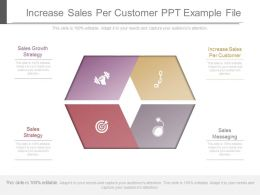 Increase Sales Per Customer Ppt Example File