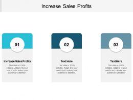 Increase Sales Profits Ppt Powerpoint Presentation File Slide Portrait Cpb