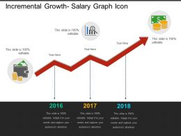Incremental Growth Salary Graph Icon