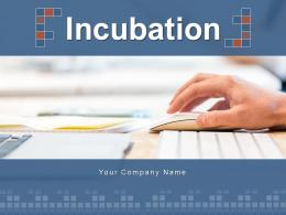 Incubation Business Components Services Incubation Experience Expansion