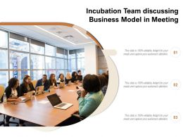 Incubation Team Discussing Business Model In Meeting