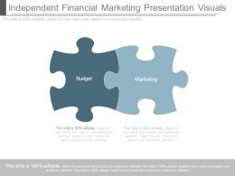 Independent Financial Marketing Presentation Visuals