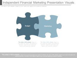 independent_financial_marketing_presentation_visuals_Slide01