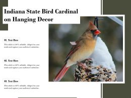 Indiana State Bird Cardinal On Hanging Decor