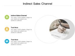 Indirect Sales Channel Ppt Powerpoint Presentation Styles Demonstration Cpb
