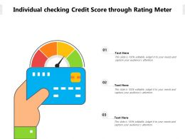 Individual Checking Credit Score Through Rating Meter