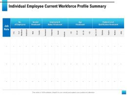 Individual Employee Current Workforce Profile Summary Status Headcount Ppt Slides