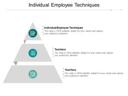 Individual Employee Techniques Ppt Powerpoint Presentation Slides Deck Cpb