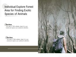 Individual Explore Forest Area For Finding Exotic Species Of Animals