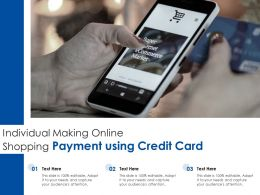 Individual Making Online Shopping Payment Using Credit Card
