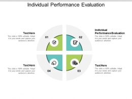 Individual Performance Evaluation Ppt Powerpoint Presentation File Format Ideas Cpb