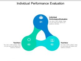 Individual Performance Evaluation Ppt Powerpoint Presentation Model Demonstration Cpb