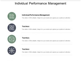 Individual Performance Management Ppt Powerpoint Presentation File Example Cpb