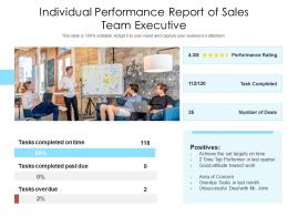 Individual Performance Report Of Sales Team Executive