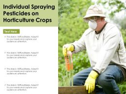 Individual Spraying Pesticides On Horticulture Crops