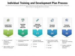 Individual Training And Development Plan Process