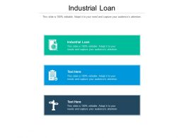 Industrial Loan Ppt Powerpoint Presentation Visual Aids Layouts Cpb