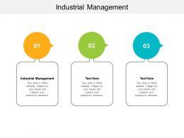 Industrial Management Ppt Powerpoint Presentation Slides Icon Cpb