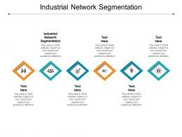 Industrial Network Segmentation Ppt Powerpoint Presentation Microsoft Cpb