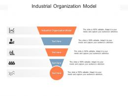 Industrial Organization Model Ppt Powerpoint Presentation Professional Objects Cpb