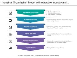 Industrial Organization Model With Attractive Industry And Strategy Formulation